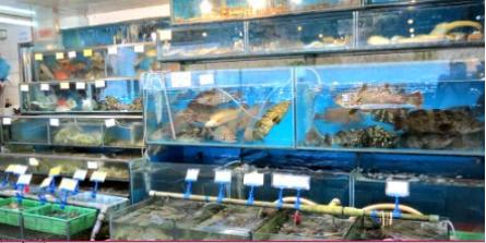 해안가의환상적인신선한해산물