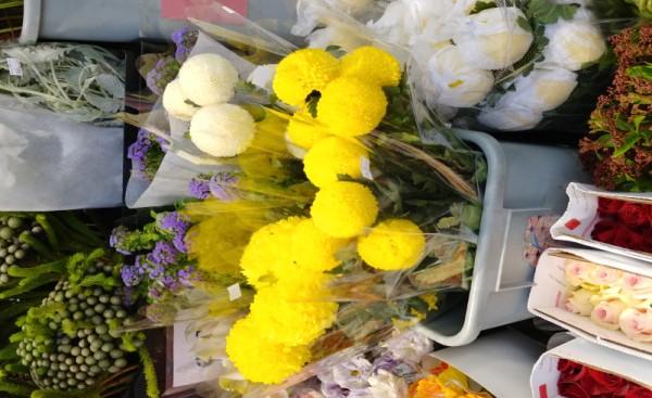우리나라에서는 본 적 없는 예쁘고 동그란 꽃:중국 이름은 乒乓花 (Ping Pang Hua) 한국어로 번역하면